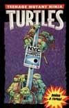 http://www.turtlescomics.narod.ru/n_08.jpg